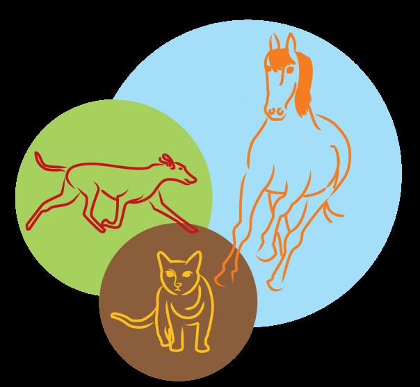 Biggis Tierheilpraxis - Seitenlogo